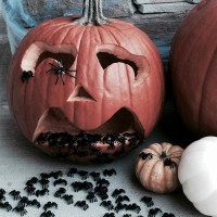 How to make a scary jack-o-lantern with spiders!